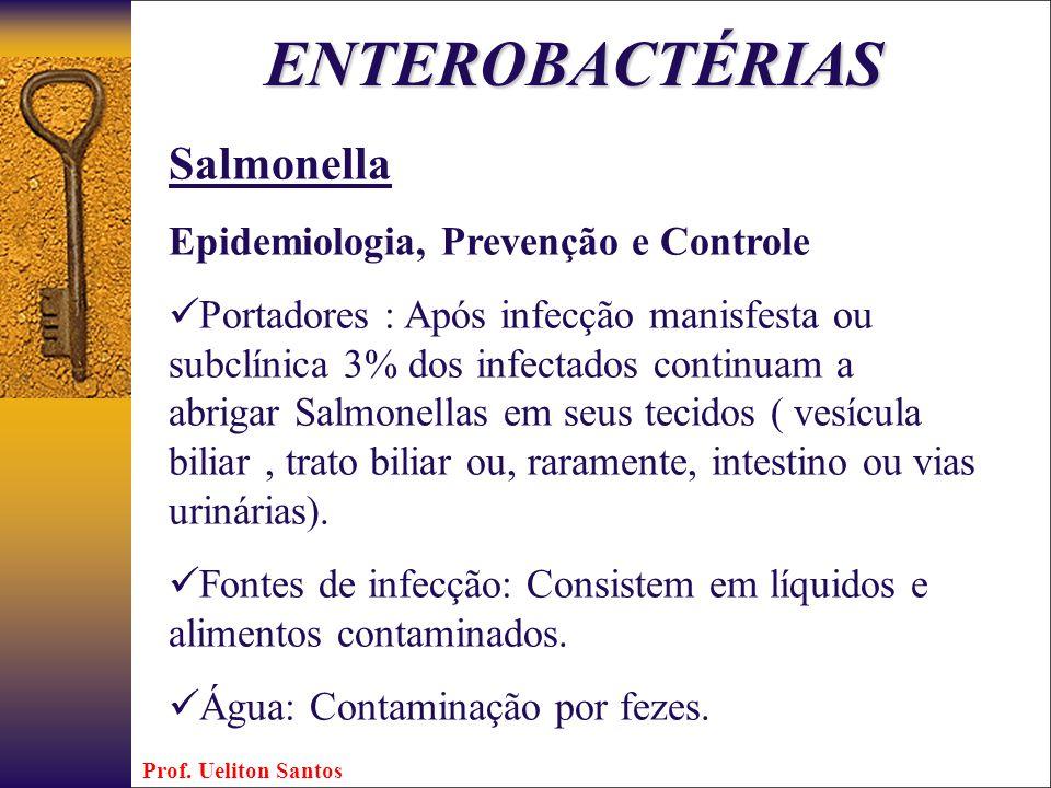 Salmonella Epidemiologia, Prevenção e Controle Portadores : Após infecção manisfesta ou subclínica 3% dos infectados continuam a abrigar Salmonellas e