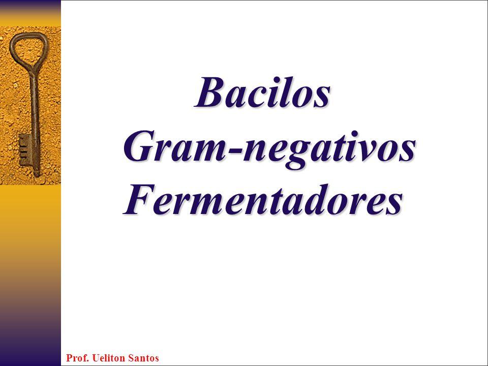 Bacilos Gram-negativos Gram-negativosFermentadores Prof. Ueliton Santos