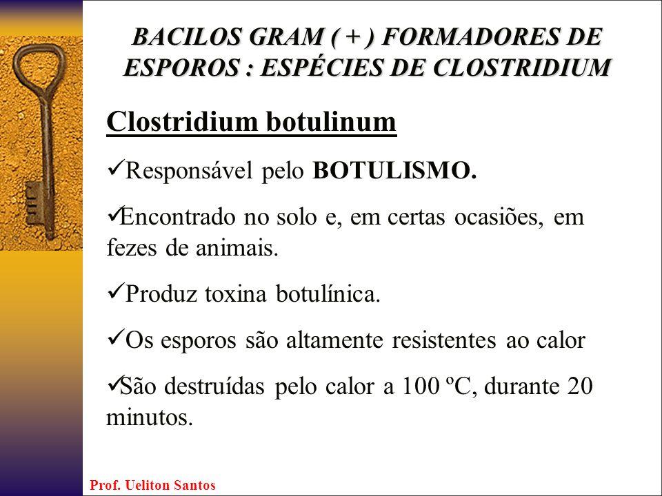 Clostridium botulinum Responsável pelo BOTULISMO. Encontrado no solo e, em certas ocasiões, em fezes de animais. Produz toxina botulínica. Os esporos