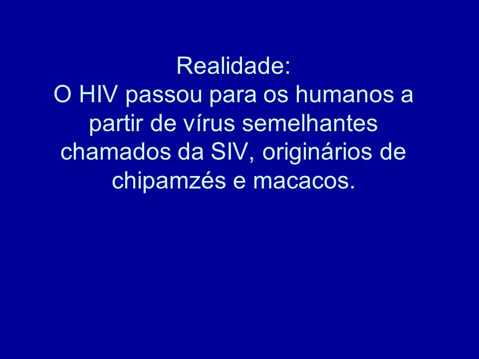Realidade: O HIV passou para os humanos a partir de vírus semelhantes chamados da SIV, originários de chipamzés e macacos.