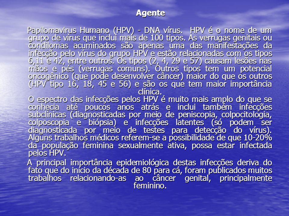Agente Agente Papilomavirus Humano (HPV) - DNA vírus.