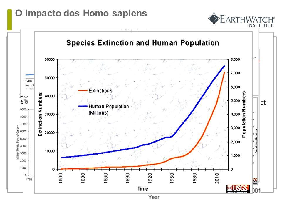O impacto dos Homo sapiens