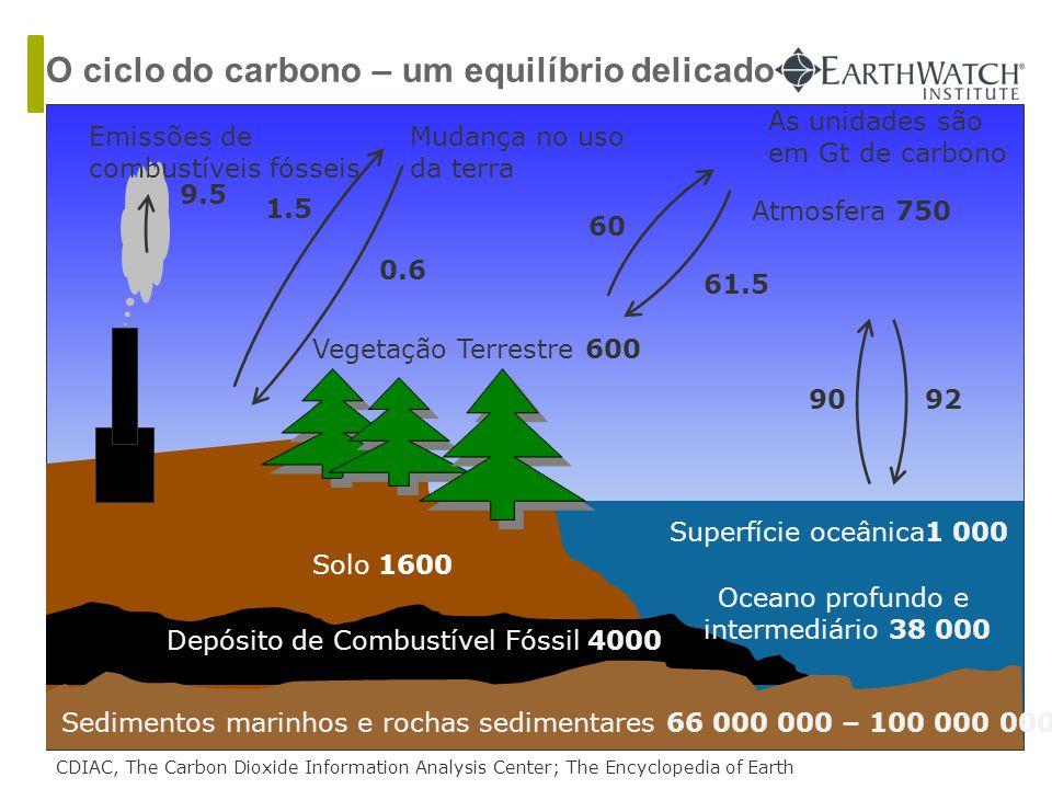 Solo 1600 Depósito de Combustível Fóssil 4000 Vegetação Terrestre 600 Atmosfera 750 Sedimentos marinhos e rochas sedimentares 66 000 000 – 100 000 000 Oceano profundo e intermediário 38 000 Superfície oceânica1 000 9092 60 61.5 CDIAC, The Carbon Dioxide Information Analysis Center; The Encyclopedia of Earth 0.6 1.5 Mudança no uso da terra Emissões de combustíveis fósseis 9.5 As unidades são em Gt de carbono O ciclo do carbono – um equilíbrio delicado
