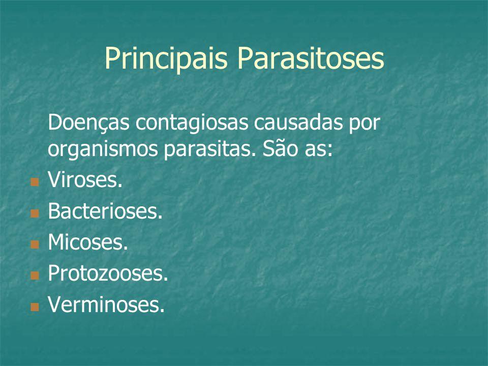 Principais Parasitoses Doenças contagiosas causadas por organismos parasitas.