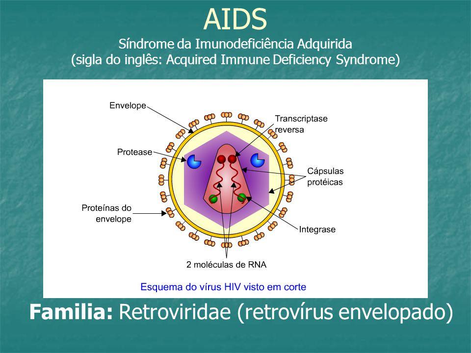AIDS Síndrome da Imunodeficiência Adquirida (sigla do inglês: Acquired Immune Deficiency Syndrome) Familia: Retroviridae (retrovírus envelopado)