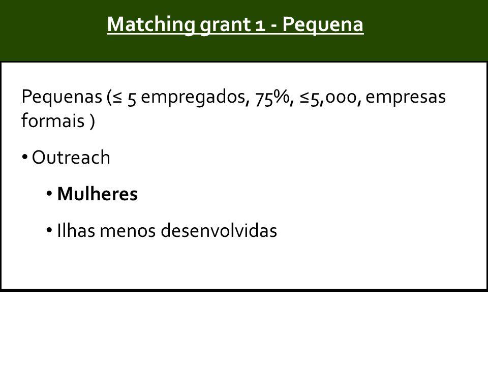Title Pequenas (≤ 5 empregados, 75%, ≤5,000, empresas formais ) Outreach Mulheres Ilhas menos desenvolvidas Matching grant 1 - Pequena
