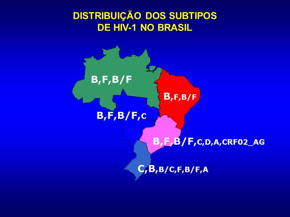 DISTRIBUIÇÃO GLOBAL DOS SUBTIPOS GENÉTICOS (env) DO HIV-1 C B E B C B B B A B A A D Other B A Other A B C Others 5% (F, G, H, J, NT) D 5.3% C C 47.2% E E 3.2% B B 12.3% A A 27% Adaptado de: Osmanov S, 2005.