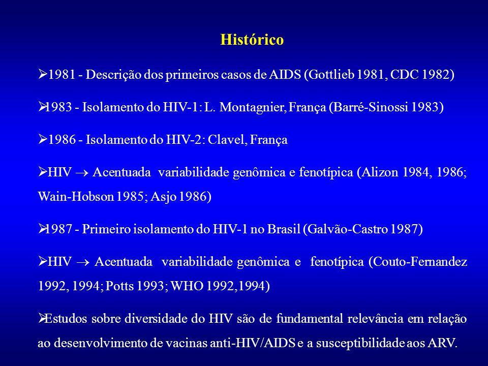 Ministério da Saúde Fundação Oswaldo Cruz - Fiocruz Depto. de Imunologia - IOC Lab. de AIDS e Imunologia Molecular Seminário Brasil França 2006 Divers