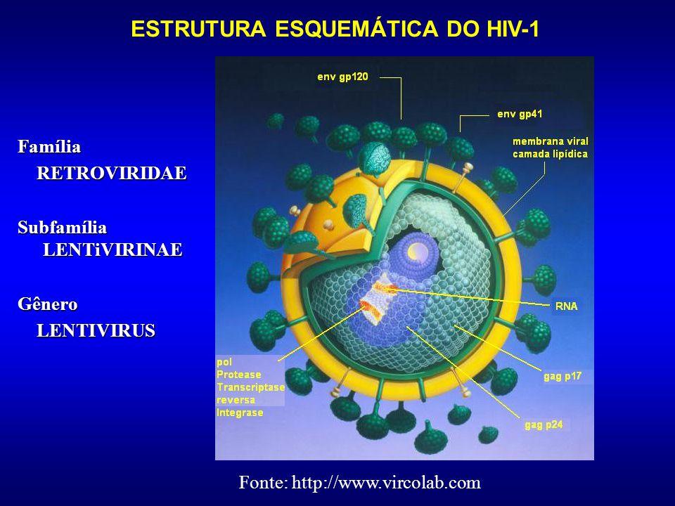 Notificações de Casos de Infecção pelo HIV-1 em Municípios Brasileiros (1980-2001) 1980-86 1987-93 1994-2001 Fonte:PN-DST/AIDS-MS, 2003
