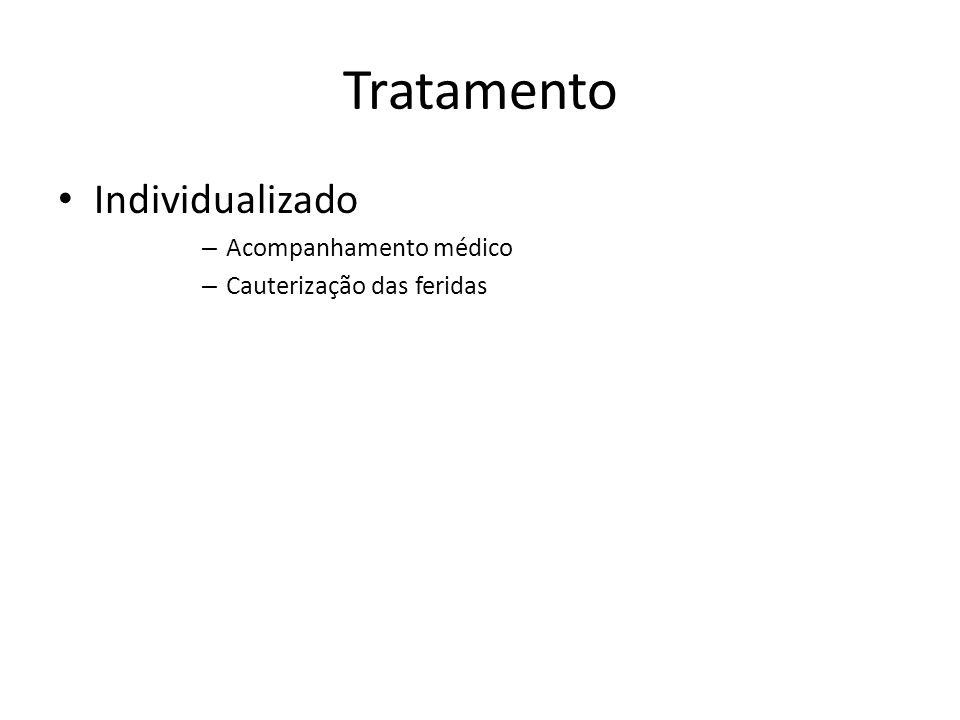 Tratamento Individualizado – Acompanhamento médico – Cauterização das feridas
