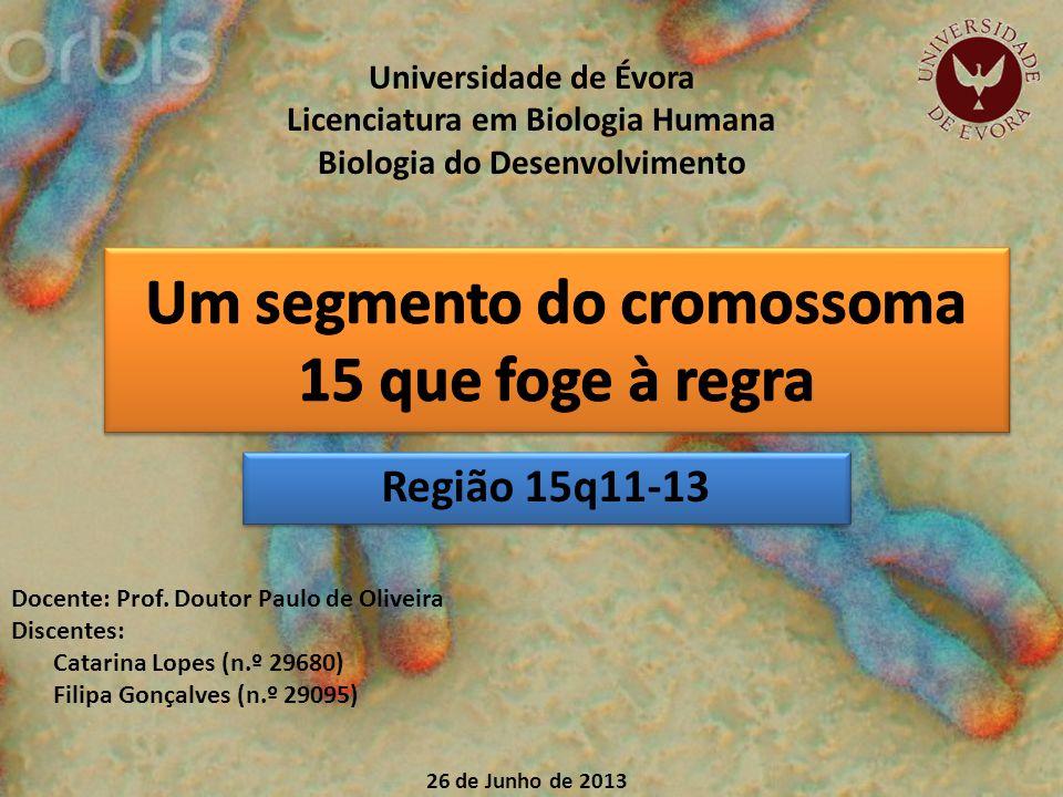 Região 15q11-13 Universidade de Évora Licenciatura em Biologia Humana Biologia do Desenvolvimento 26 de Junho de 2013 Docente: Prof.