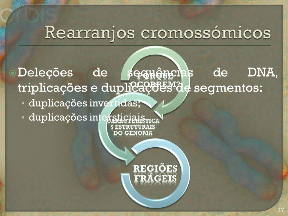  Deleções de sequências de DNA, triplicações e duplicações de segmentos: duplicações invertidas; duplicações intersticiais.
