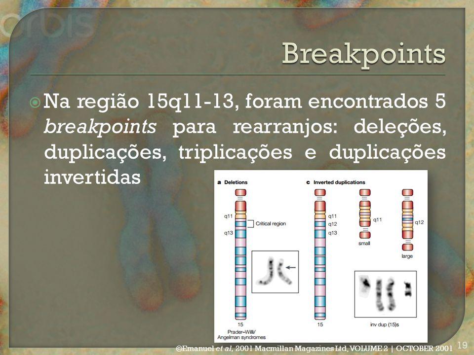  Na região 15q11-13, foram encontrados 5 breakpoints para rearranjos: deleções, duplicações, triplicações e duplicações invertidas ©Emanuel et al, 2001 Macmillan Magazines Ltd, VOLUME 2 | OCTOBER 2001 19