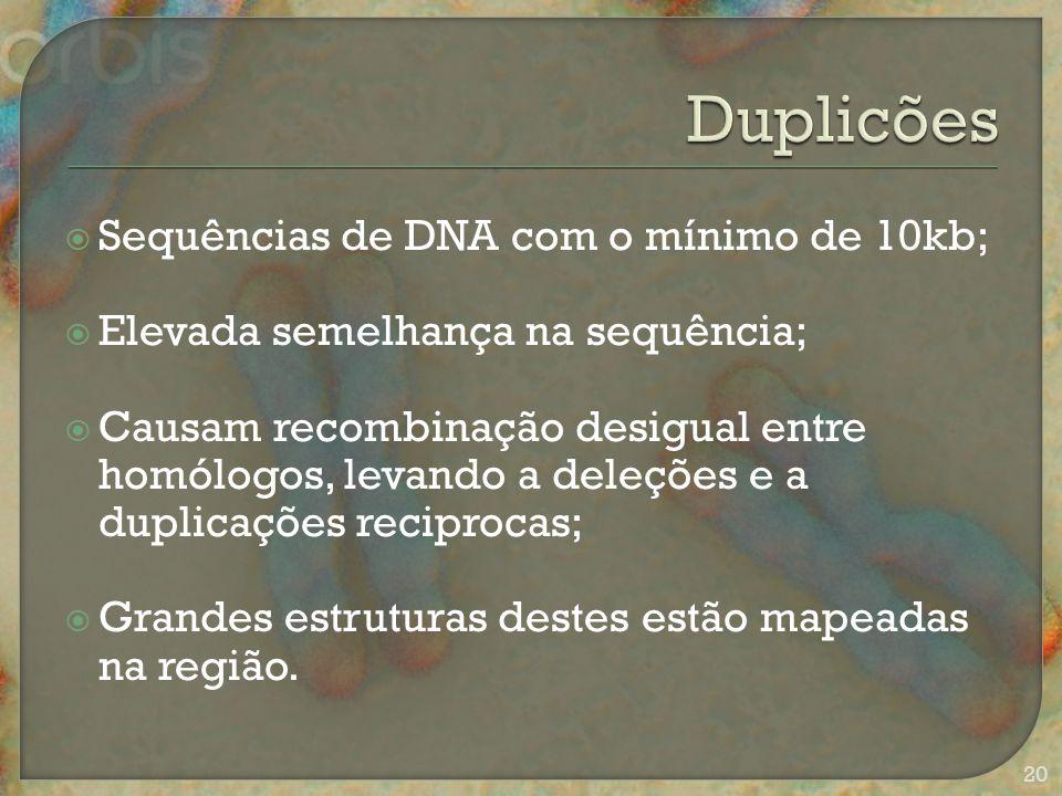  Sequências de DNA com o mínimo de 10kb;  Elevada semelhança na sequência;  Causam recombinação desigual entre homólogos, levando a deleções e a duplicações reciprocas;  Grandes estruturas destes estão mapeadas na região.