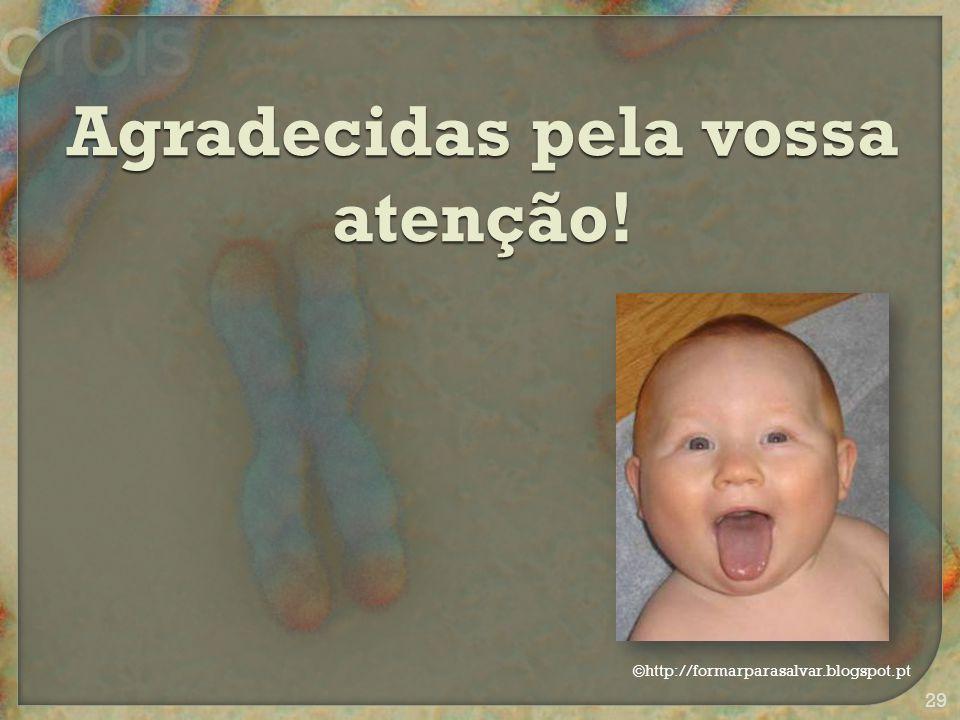 Agradecidas pela vossa atenção! ©http://formarparasalvar.blogspot.pt 29