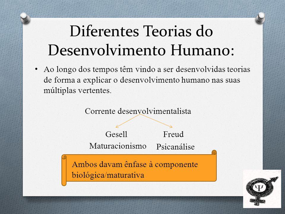Diferentes Teorias do Desenvolvimento Humano: Corrente comportamentalista (behavorista) Mais ligada à componente ambiente/social Watson Piaget - Corrente construtivista Erikson – Teoria psicossocial Maior importância à componente biológica/social.