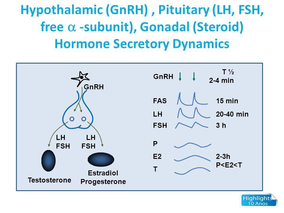 Hypothalamic (GnRH), Pituitary (LH, FSH, free  -subunit), Gonadal (Steroid) Hormone Secretory Dynamics GnRH LH FSH LH FSH Testosterone Estradiol Prog