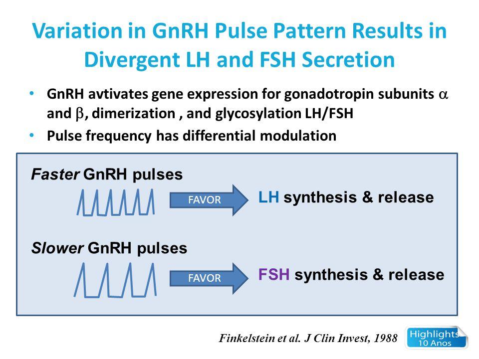 Variation in GnRH Pulse Pattern Results in Divergent LH and FSH Secretion GnRH avtivates gene expression for gonadotropin subunits  and , dimerizati