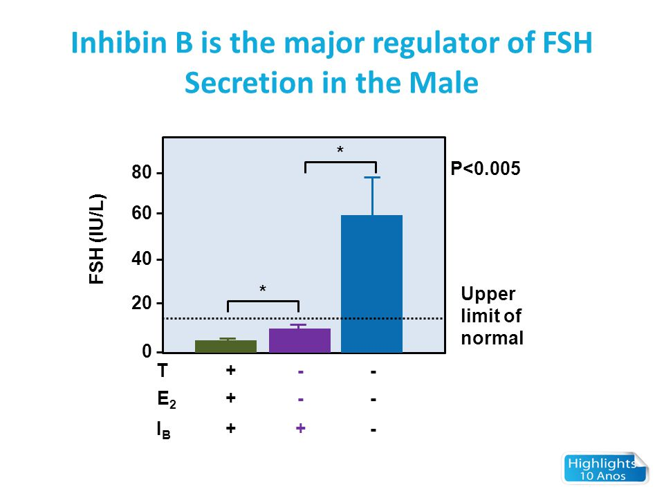 Inhibin B is the major regulator of FSH Secretion in the Male 80 60 40 20 0 * * P<0.005 Upper limit of normal FSH (IU/L) T E2E2 IBIB + + + - - + - - -