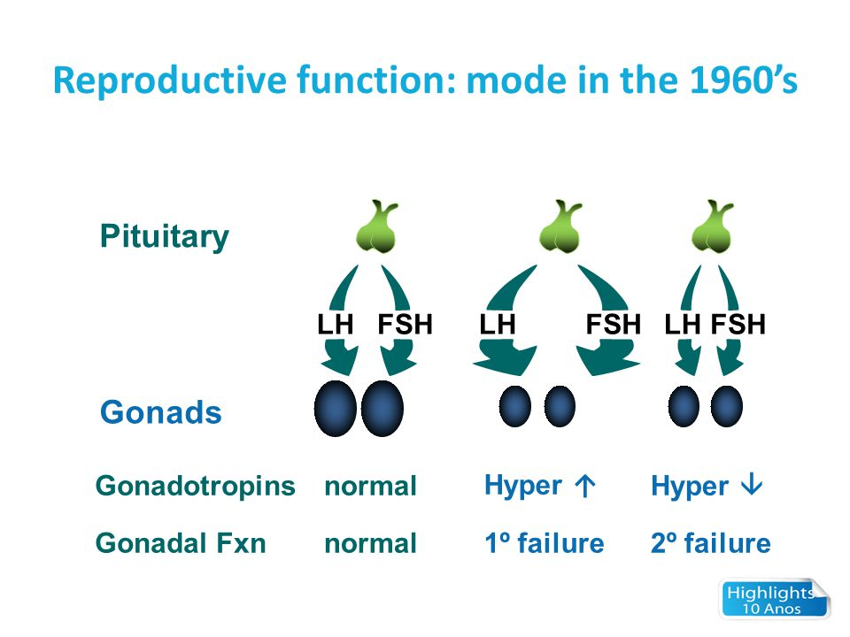 Kalmann Syndrome: Hypothalamic GnRH Deficiency.