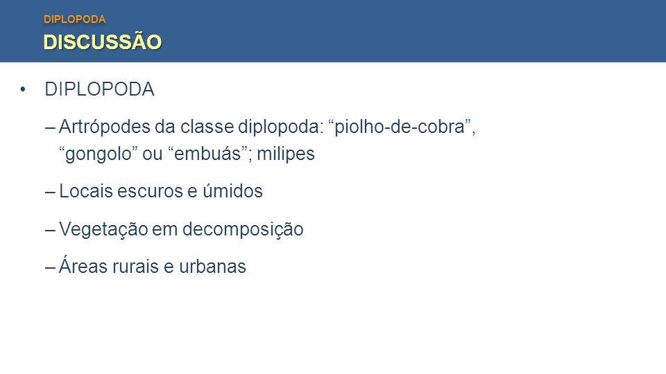 """DIPLOPODA DISCUSSÃO –Artrópodes da classe diplopoda: """"piolho-de-cobra"""", """"gongolo"""" ou """"embuás""""; milipes –Locais escuros e úmidos –Vegetação em decompos"""