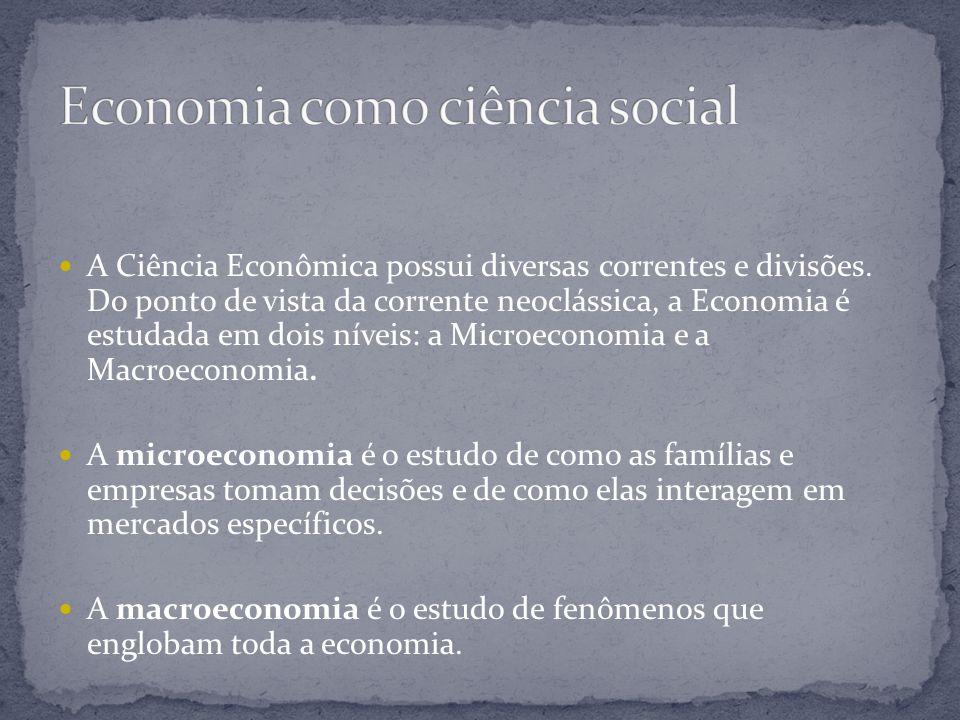 A Ciência Econômica possui diversas correntes e divisões. Do ponto de vista da corrente neoclássica, a Economia é estudada em dois níveis: a Microecon