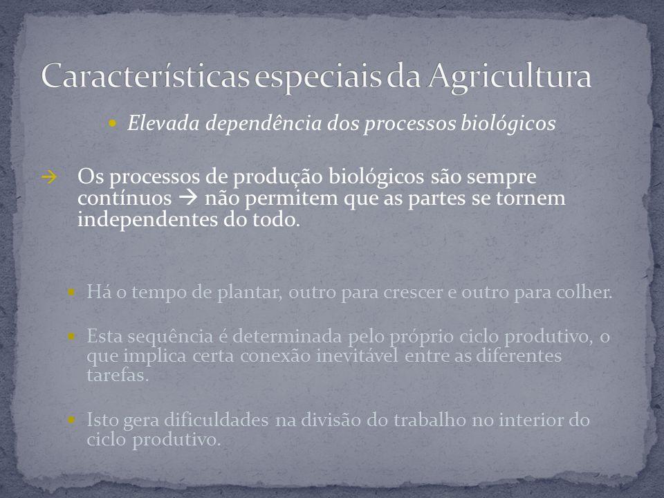 Elevada dependência dos processos biológicos  Os processos de produção biológicos são sempre contínuos  não permitem que as partes se tornem indepen
