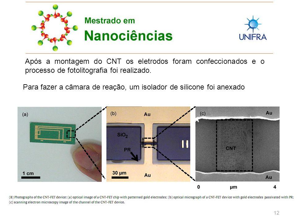 12 Após a montagem do CNT os eletrodos foram confeccionados e o processo de fotolitografia foi realizado.