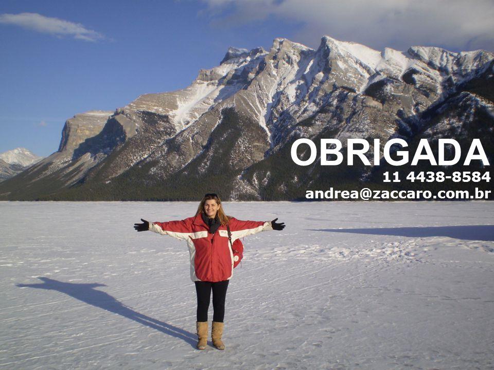 11 4438-8584 andrea@zaccaro.com.br OBRIGADA