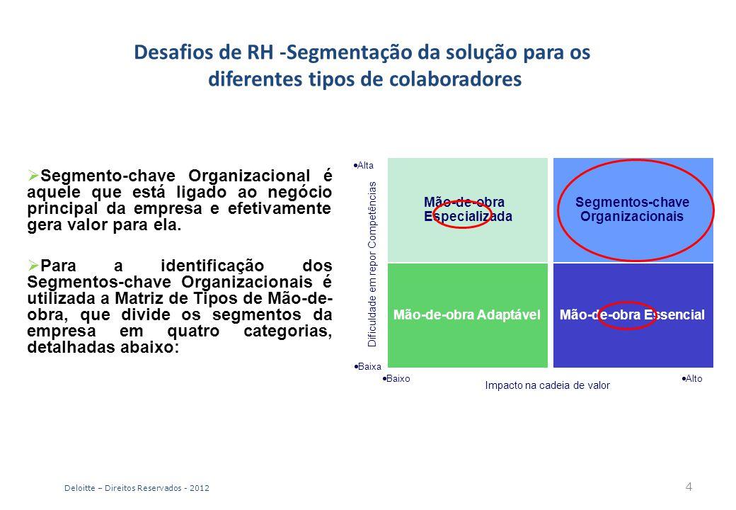 Desafios de RH -Segmentação da solução para os diferentes tipos de colaboradores  Segmento-chave Organizacional é aquele que está ligado ao negócio p