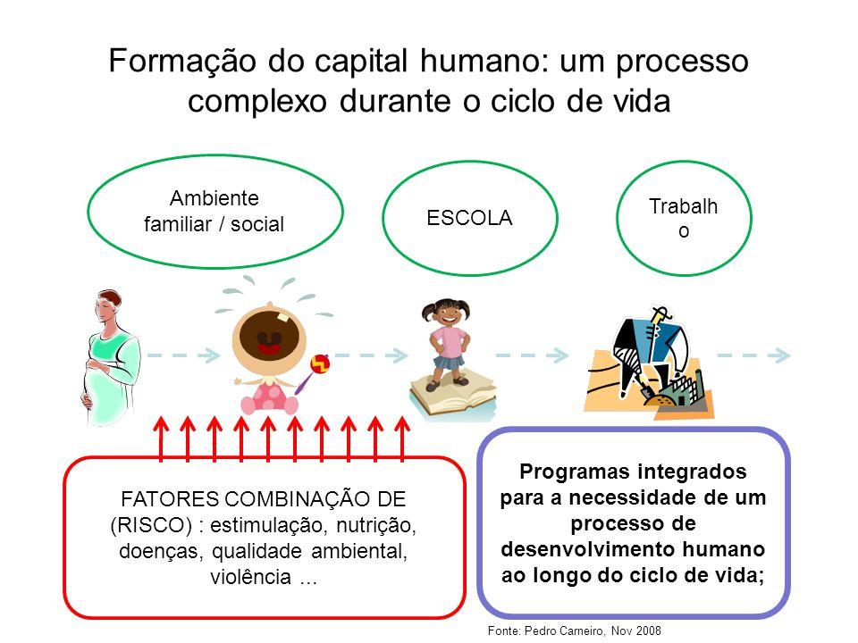 Formação do capital humano: um processo complexo durante o ciclo de vida Ambiente familiar / social ESCOLA Trabalh o FATORES COMBINAÇÃO DE (RISCO) : estimulação, nutrição, doenças, qualidade ambiental, violência...