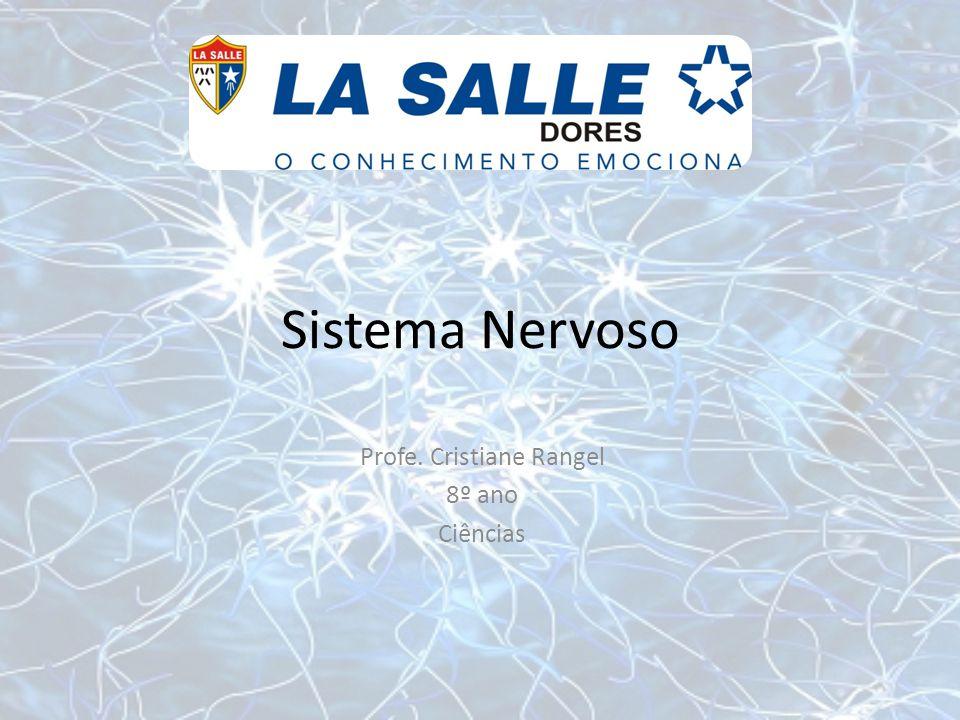 O sistema nervoso Como os impulsos nervosos passam de um neurônio para outro.
