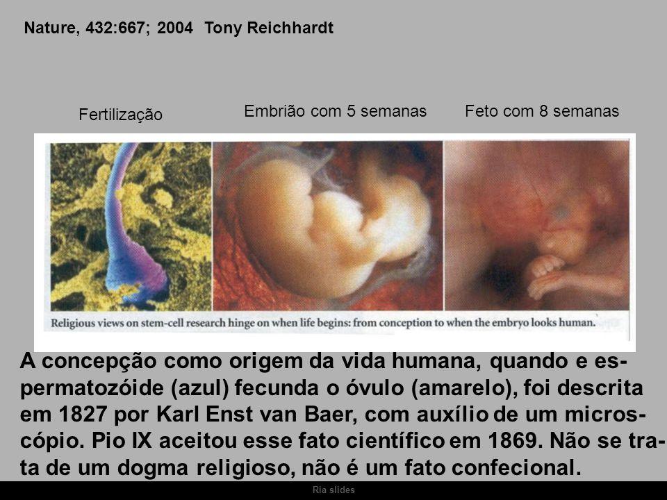 Ria slides Nature, 432:667; 2004 Tony Reichhardt A concepção como origem da vida humana, quando e es- permatozóide (azul) fecunda o óvulo (amarelo), f