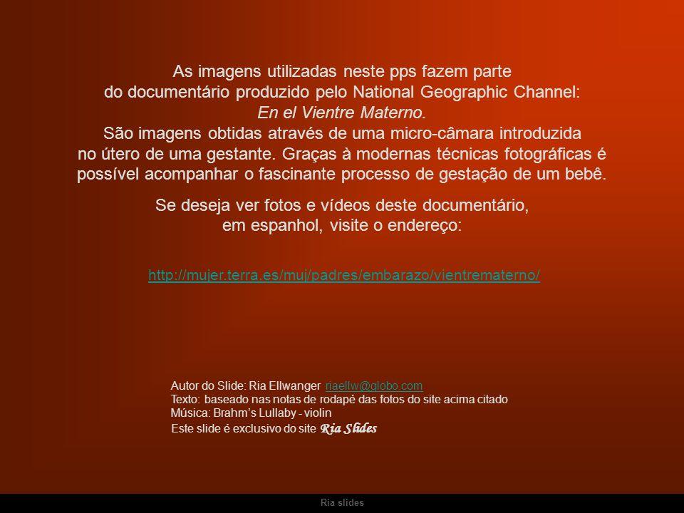 http://mujer.terra.es/muj/padres/embarazo/vientrematerno/ As imagens utilizadas neste pps fazem parte do documentário produzido pelo National Geograph