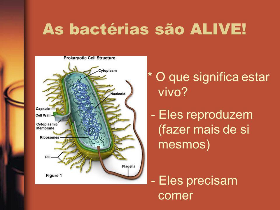 As bactérias são ALIVE! * O que significa estar vivo? - Eles reproduzem (fazer mais de si mesmos) - Eles precisam comer