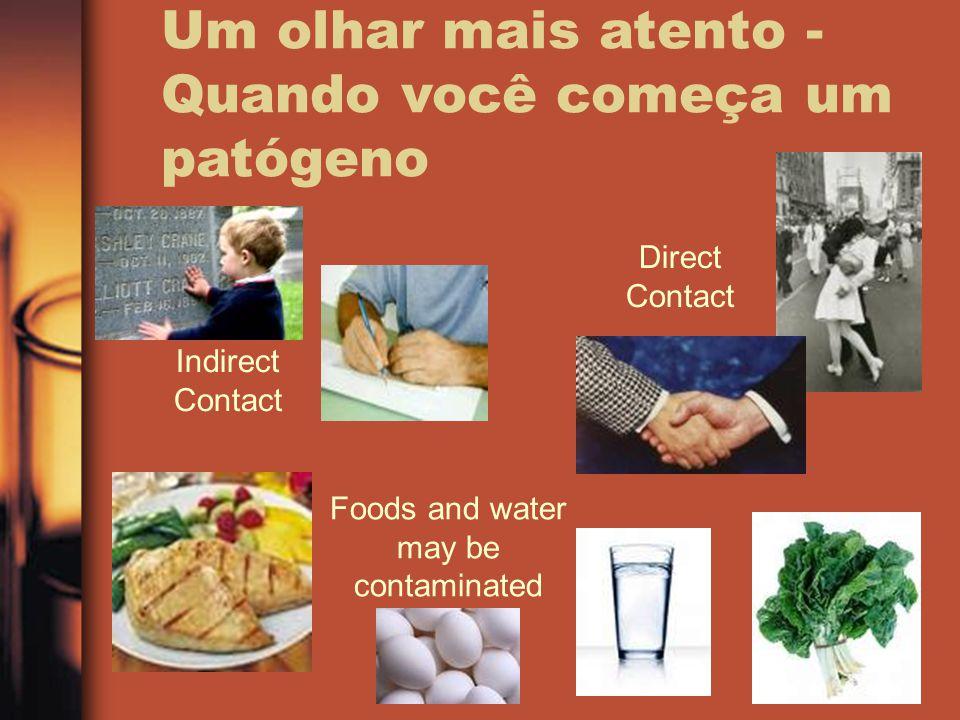 Um olhar mais atento - Quando você começa um patógeno Indirect Contact Direct Contact Foods and water may be contaminated