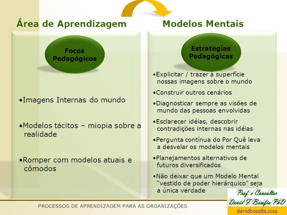 Focos Pedagógicos Estratégias Pedagógicas Imagens Internas do mundo Modelos tácitos – miopia sobre a realidade Romper com modelos atuais e cômodos Exp