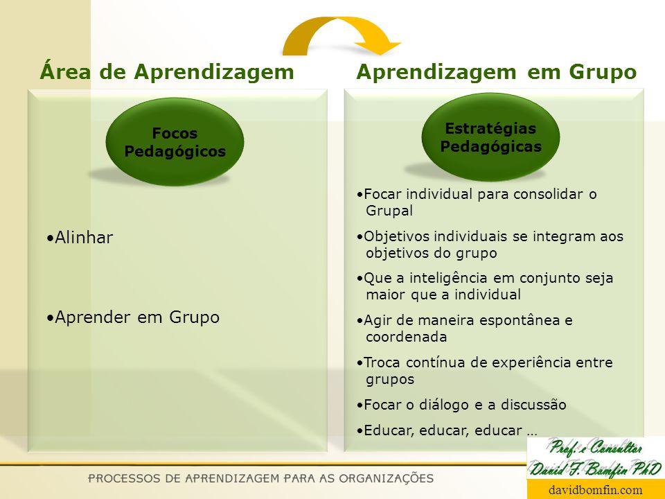 Focos Pedagógicos Estratégias Pedagógicas Alinhar Aprender em Grupo Focar individual para consolidar o Grupal Objetivos individuais se integram aos ob