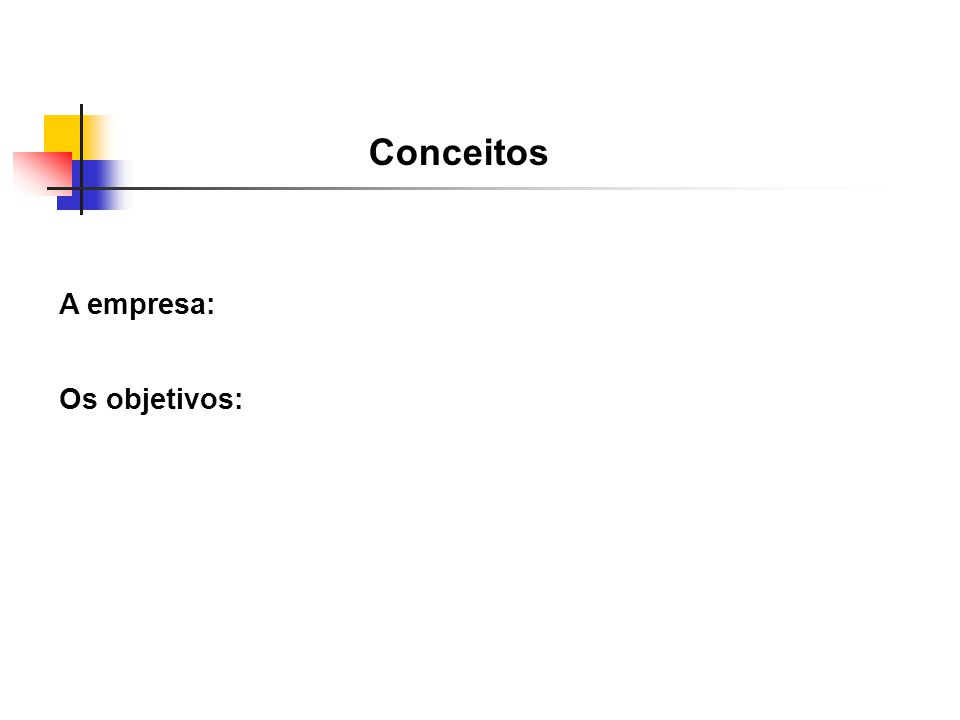 Conceitos A empresa: Os objetivos: