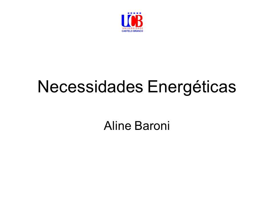 Necessidades Energéticas Aline Baroni