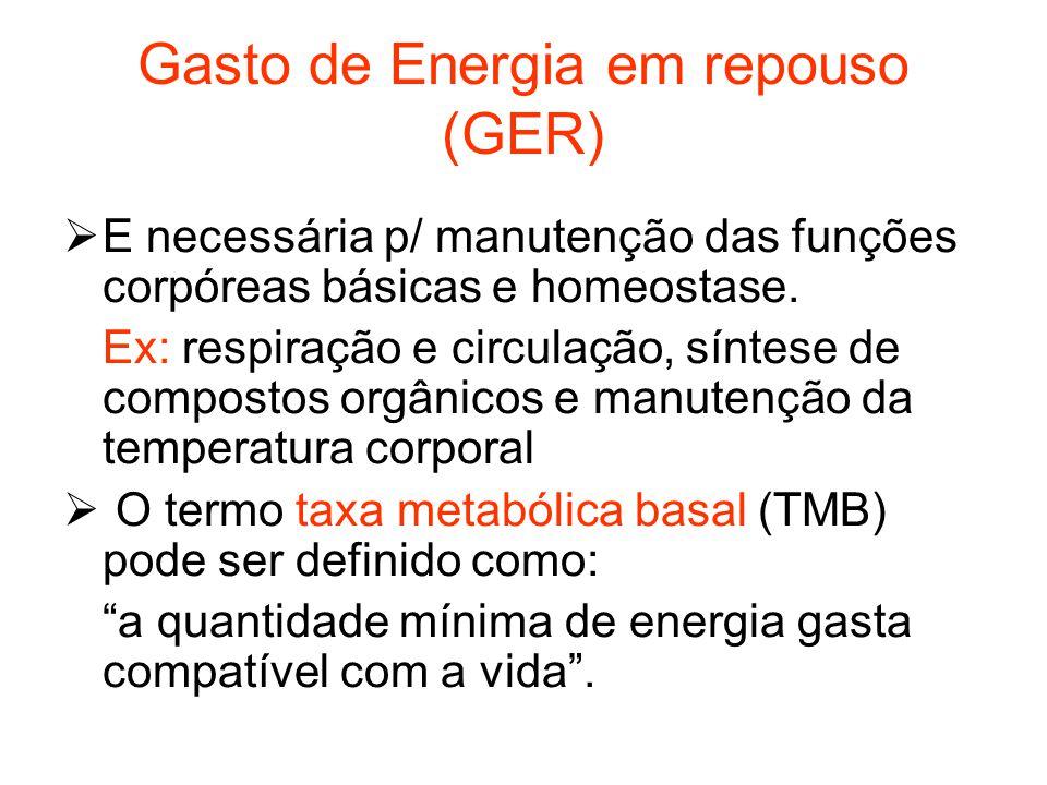 Gasto de Energia em repouso (GER)  E necessária p/ manutenção das funções corpóreas básicas e homeostase. Ex: respiração e circulação, síntese de com