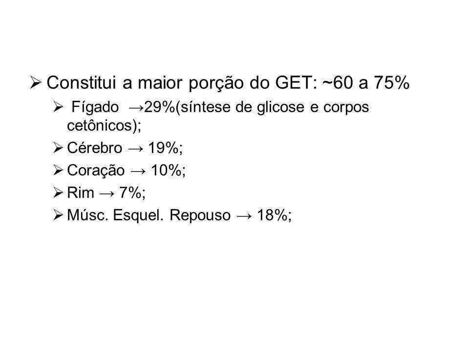  Constitui a maior porção do GET: ~60 a 75%  Fígado →29%(síntese de glicose e corpos cetônicos);  Cérebro → 19%;  Coração → 10%;  Rim → 7%;  Mús