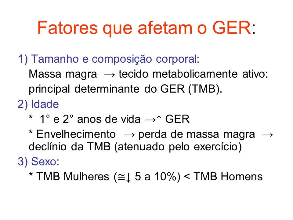 Fatores que afetam o GER: 1) Tamanho e composição corporal: Massa magra → tecido metabolicamente ativo: principal determinante do GER (TMB). 2) Idade