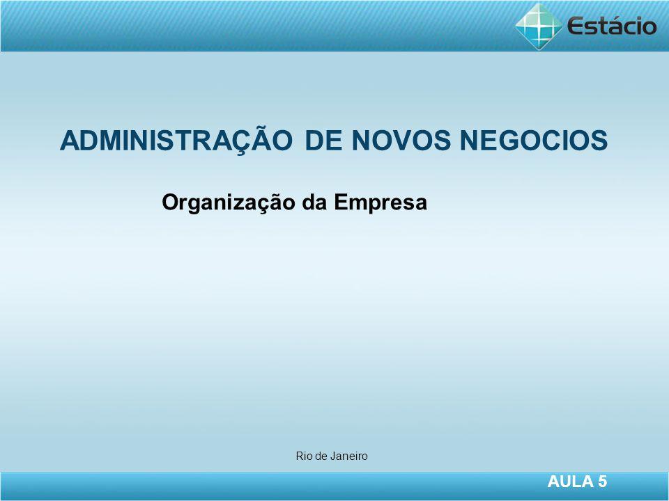 ADMINISTRAÇÃO DE NOVOS NEGOCIOS Rio de Janeiro AULA 5 Organização da Empresa