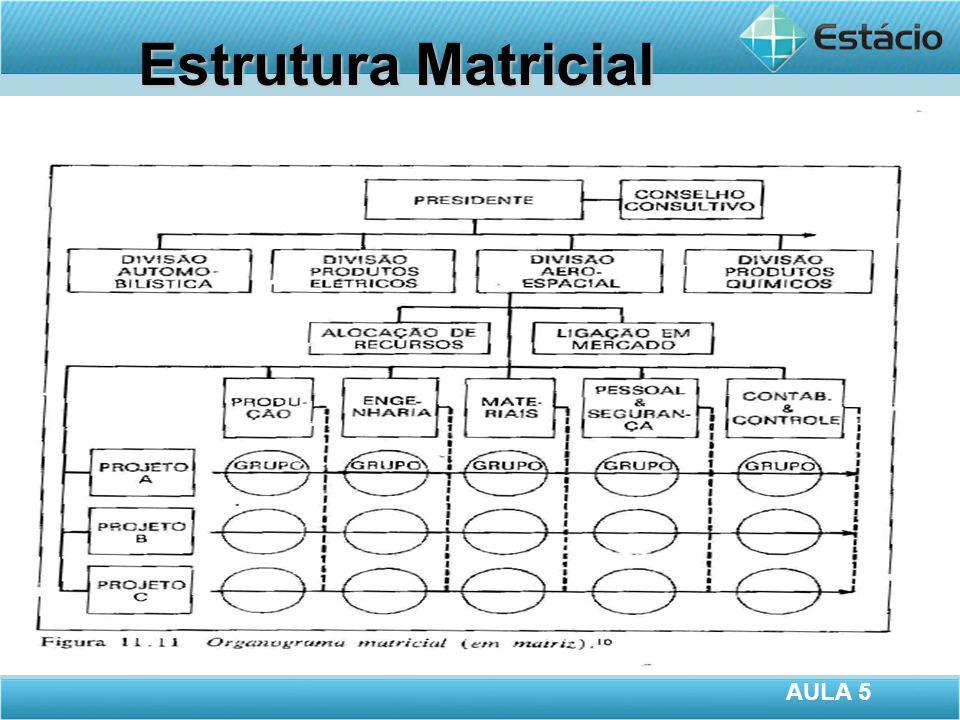 Estrutura Matricial AULA 5