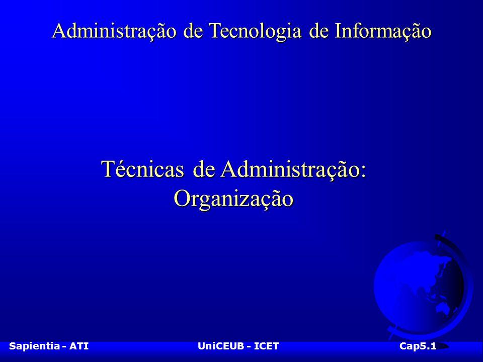 Sapientia - ATIUniCEUB - ICETCap5.1 Administração de Tecnologia de Informação Técnicas de Administração: Organização