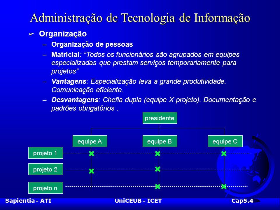 Sapientia - ATIUniCEUB - ICETCap5.4 Administração de Tecnologia de Informação F Organização –Organização de pessoas –Matricial: Todos os funcionários são agrupados em equipes especializadas que prestam serviços temporariamente para projetos –Vantagens: Especialização leva a grande produtividade.
