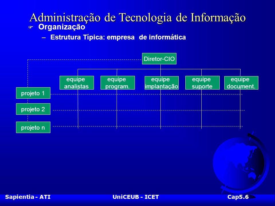 Sapientia - ATIUniCEUB - ICETCap5.6 Administração de Tecnologia de Informação F Organização –Estrutura Típica: empresa de informática Diretor-CIO projeto n equipe suporte equipe program.