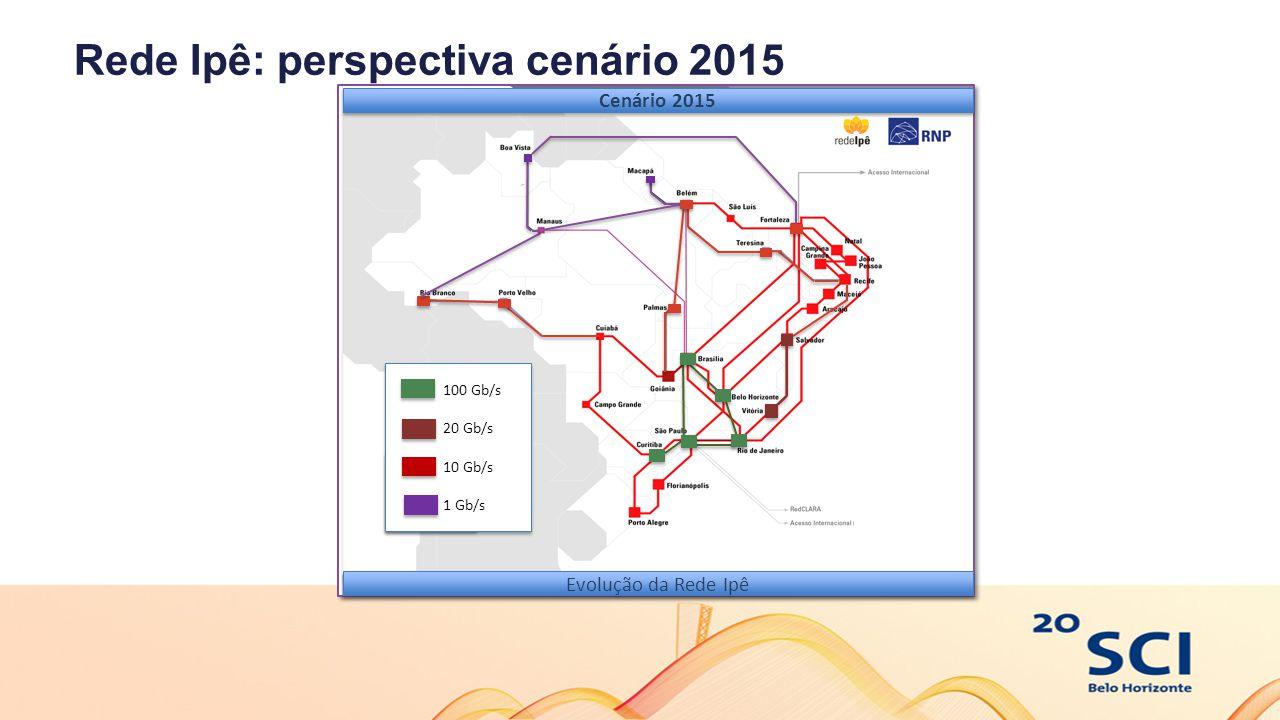 Rede Ipê: perspectiva cenário 2015