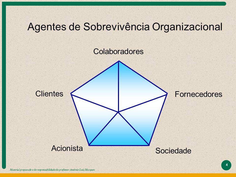 Material preparado e de responsabilidade do professor Antônio Luiz Marques 4 Agentes de Sobrevivência Organizacional Colaboradores Fornecedores Socied